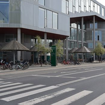 Sydhavn skole - hjerteformet cykelstativ